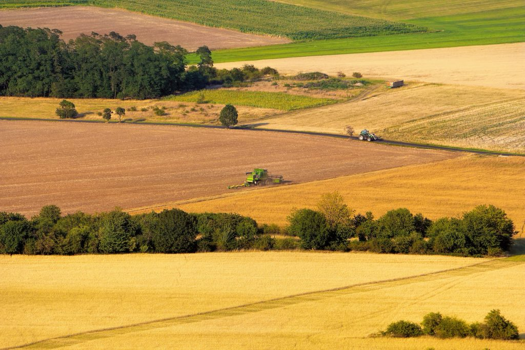 Modern harvest time, combine harvester working on colorful fields, beautiful lines, aerial view.